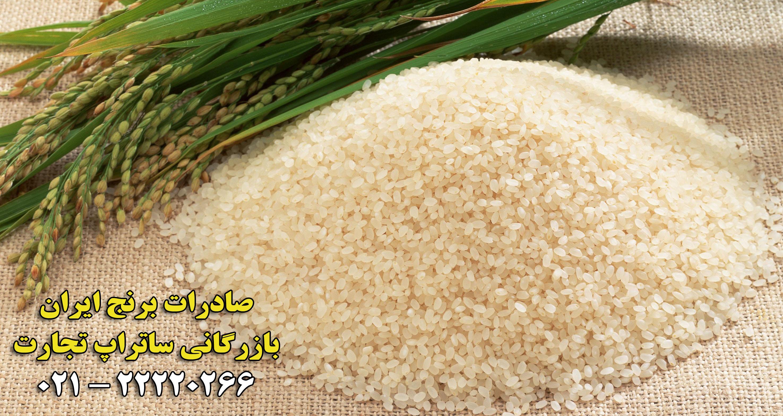 صادرات برنج ایران