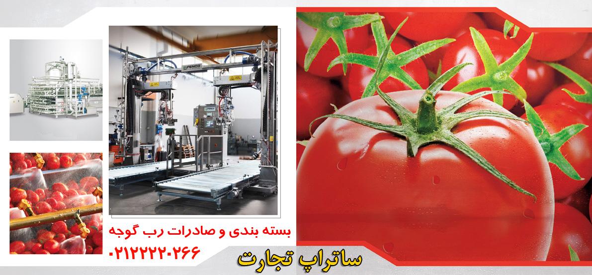 بسته بندی و صادرات رب گوجه